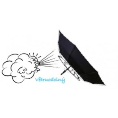 Fulton dámský průhledný holový deštník NATIONAL GALLERY Birdcage 2 National Gallery Skyline L848